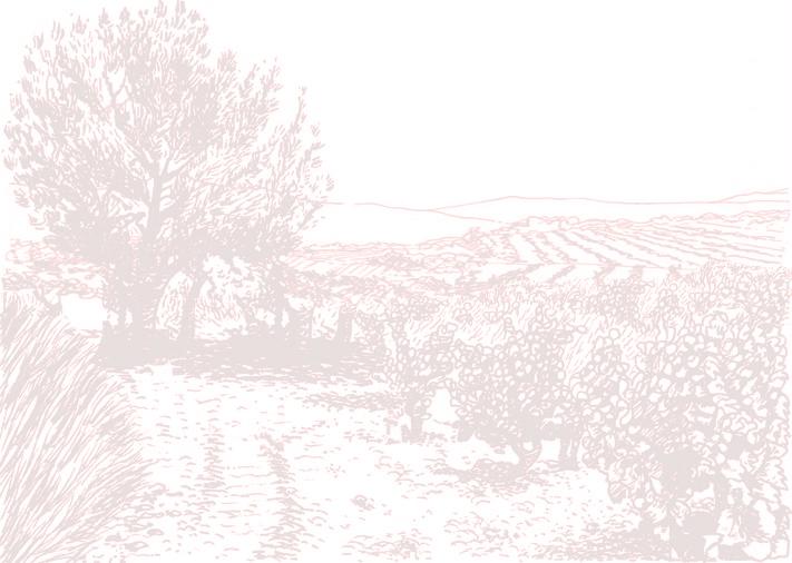Viñas Leizaola, S.L.U.